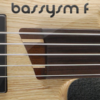 Bassysm-F - Fretless five string bass