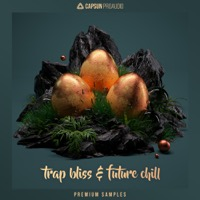 Trap Bliss & Future Chill - An expansive collection of custom designed samples
