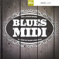 Blues MIDI - Truly authentic blues breaks, fills, and variations!