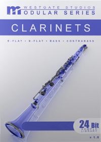Bass Clarinet Solo Modular Series Download - Comprehensive Solo Bass Clarinet library with state-of-the-art programming