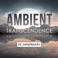 Ambient Transcendence - An atmospheric collection of sounds beamed in from an alternate reality