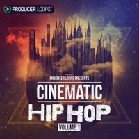 Cinematic Hip Hop Vol 1  product image