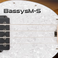 Bassysm-S product image