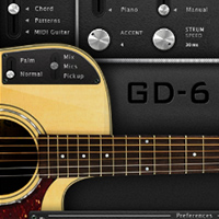 GD-6 Acoustic Guitar product image