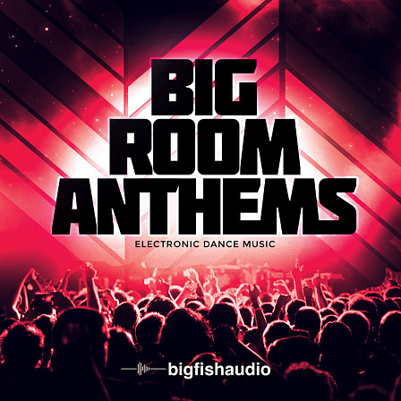 Big Room Anthems product image
