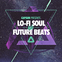 Lo-Fi Soul & Future Beats product image