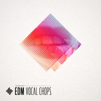 EDM Vocal Chops product image