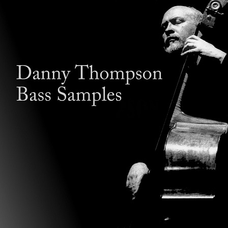 Danny Thompson Bass product image