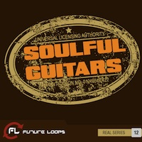Soulful Guitars product image