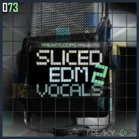 Sliced EDM Vocals Vol.2 product image