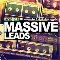 Massive Leads product image