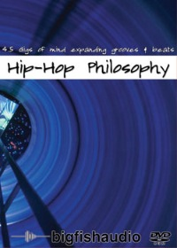 Hip Hop Philosophy product image