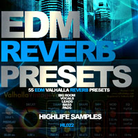 EDM Reverb Presets product image