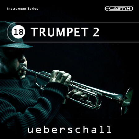 Trumpet 2 product image