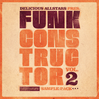 Delicious Allstars Funk Constructor Vol 2 product image