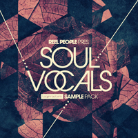 Reel People Present Soul Vocals product image