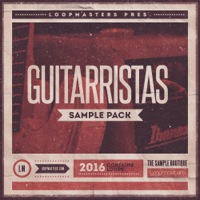 Guitarristas product image