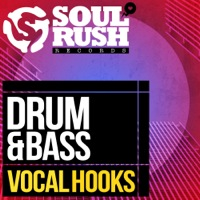 Drum & Bass Vocal Hooks product image