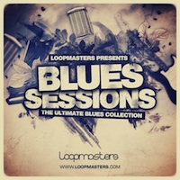 Blues Sessions - Guitars & Bass, The product image