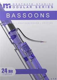 Contrabassoon Solo Modular Series Download: 485MB product image