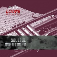 Soulful Horn Loops product image