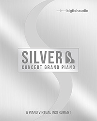 Silver: Concert Grand Piano product image