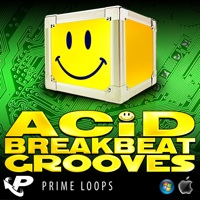 Acid Breakbeat Grooves product image
