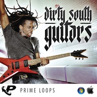 Dirty South Guitars product image
