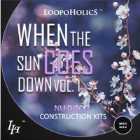 When The Sun Goes Down Vol.1: Nu Disco product image