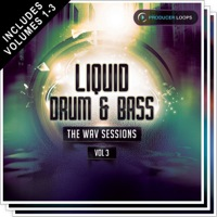 Liquid Drum & Bass: The Wav Sessions Bundle (Vols 1-3)  product image