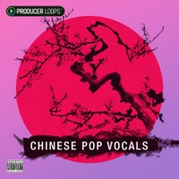 Chinese Pop Vocals Vol 1 product image