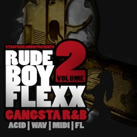 RudeBoy Flex: Gangsta R&B Vol.2 product image
