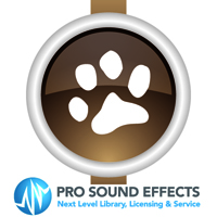 Animals Sound Effects - Birds product image