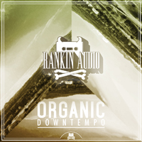 Organic Downtempo product image