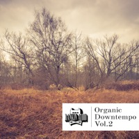 Organic Downtempo Vol. 2 product image