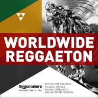 Worldwide Reggaeton product image