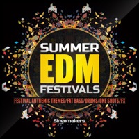 Summer EDM Festivals product image