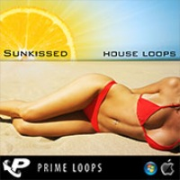 Sunkissed House Loops product image