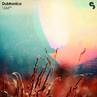 Dubtronica product image