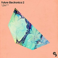 Future Electronica 2 product image