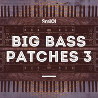 Big Bass Patches 3 product image