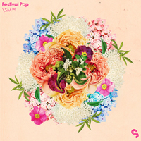 Festival Pop product image