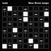 Raw Drum Loops product image