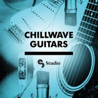 Chillwave Guitars product image