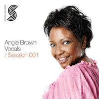Angie Brown Vocals product image