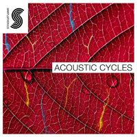 Acoustic Cycles product image