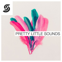 Pretty Little Sounds product image