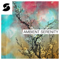 Ambient Serenity product image