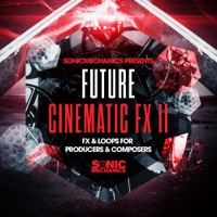 Future Cinematic FX 2 product image