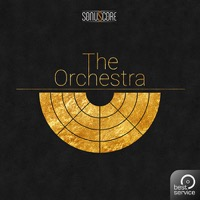 Orchestra, The Orchestral Instrument
